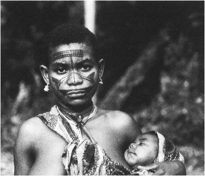 the mbuti tribe in children of the forest by kevin duffy Pygmy study shows bees' sweet side july 28,  of a documentary film and recent book by duffy, both called children of the forest  of the forest tribe.